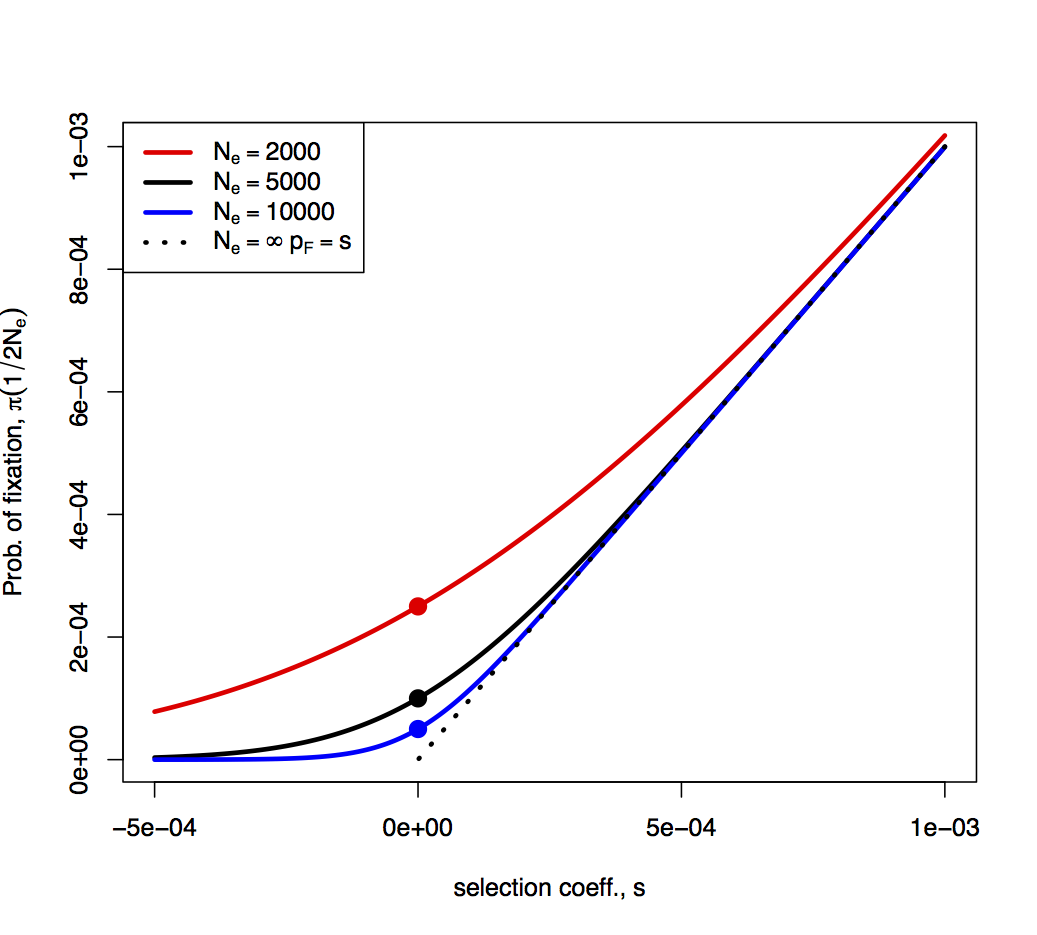 population size on genetic variation on A negative correlation between mutation rate and population size may also contribute life history affects genetic diversity more than population history does, eg r-strategists have more genetic diversity detecting selection edit population genetics models are used to infer which genes are undergoing selection.
